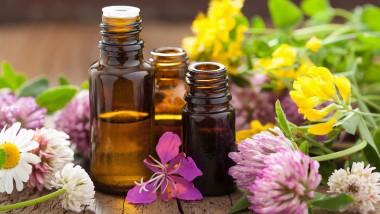 Аромат — решающий фактор для клининговой продукции и освежителей воздуха согласно исследованиям